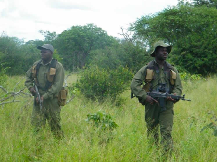 Anti poaching scouts in the Bubye Valley Conservancy